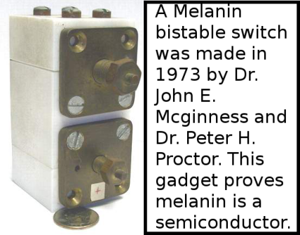 melanin bistable switch proves melanin is a semiconductor